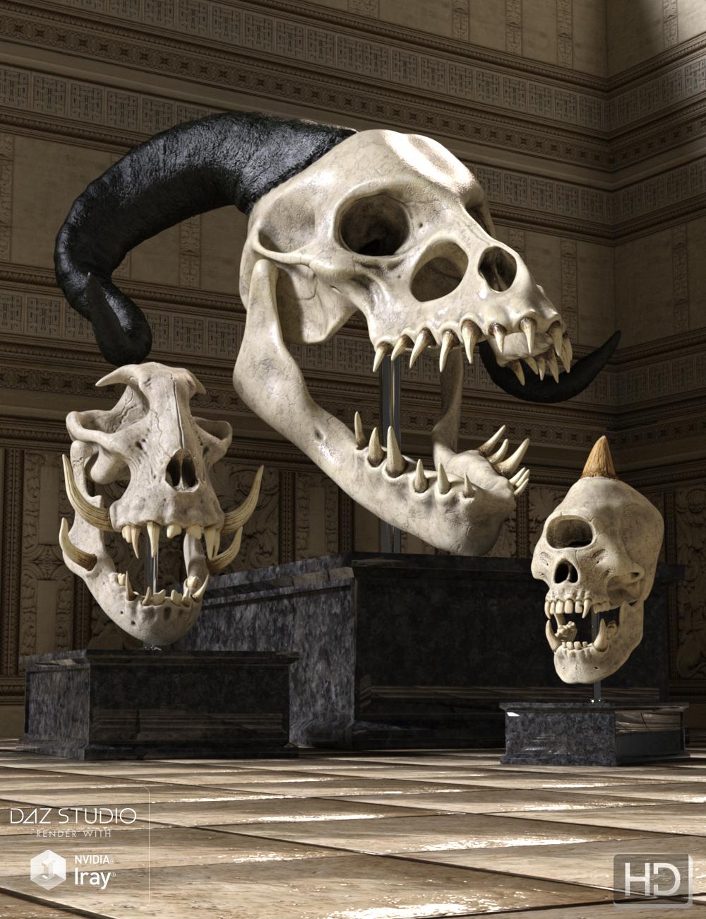 Monster Skulls HD by: Groovy Patrol, 3D Models by Daz 3D