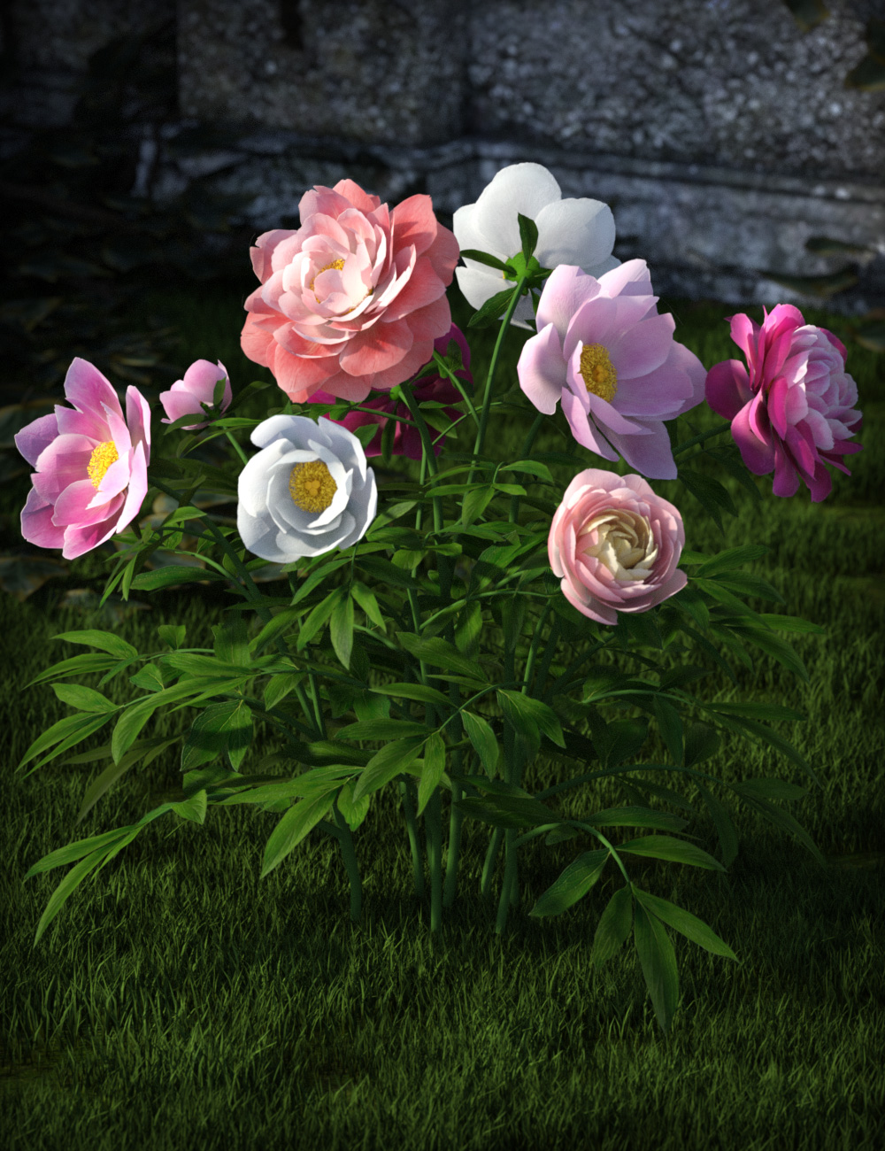 Poseable Peonies by: esha, 3D Models by Daz 3D