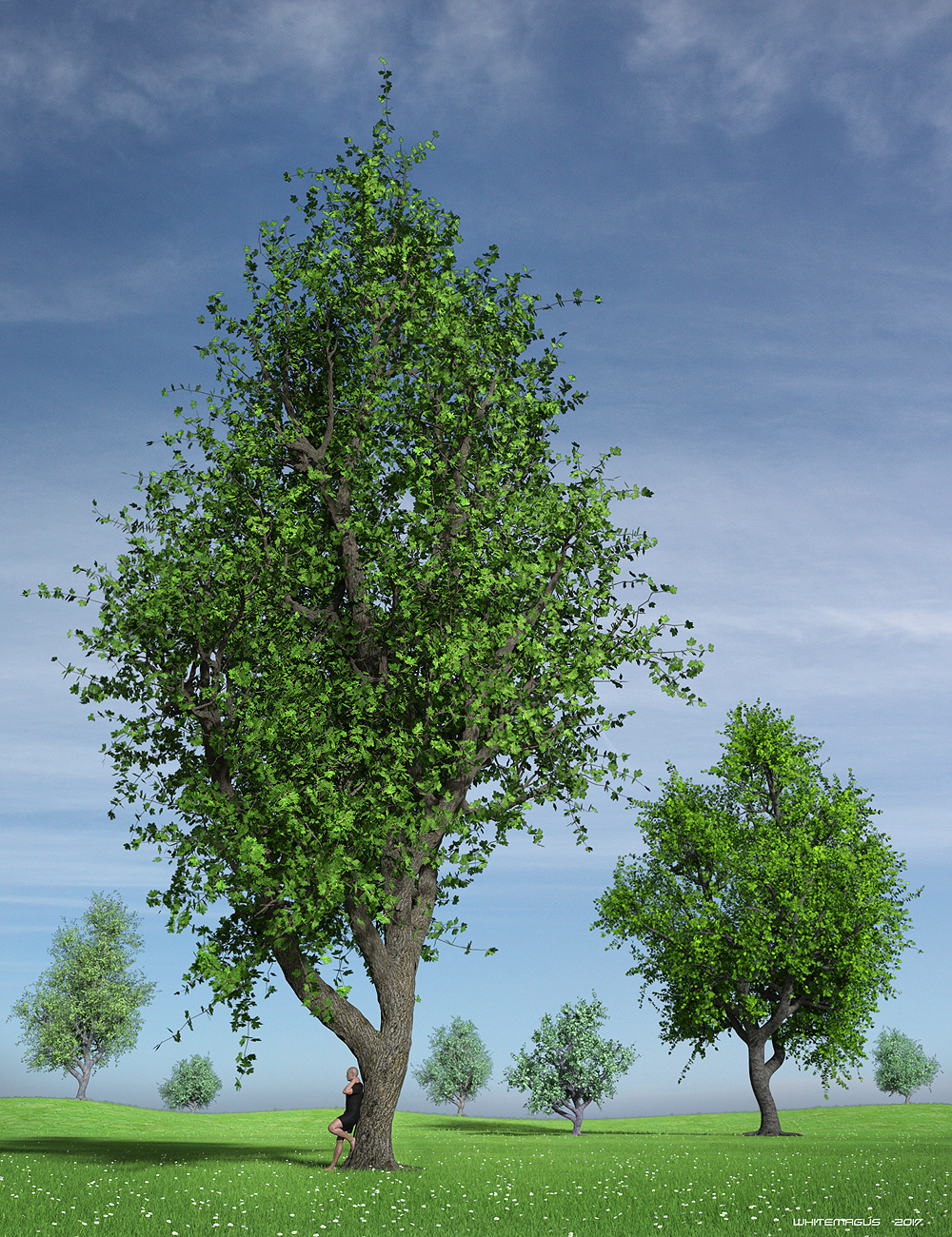 Hybrid Trees Collection by: Whitemagus, 3D Models by Daz 3D