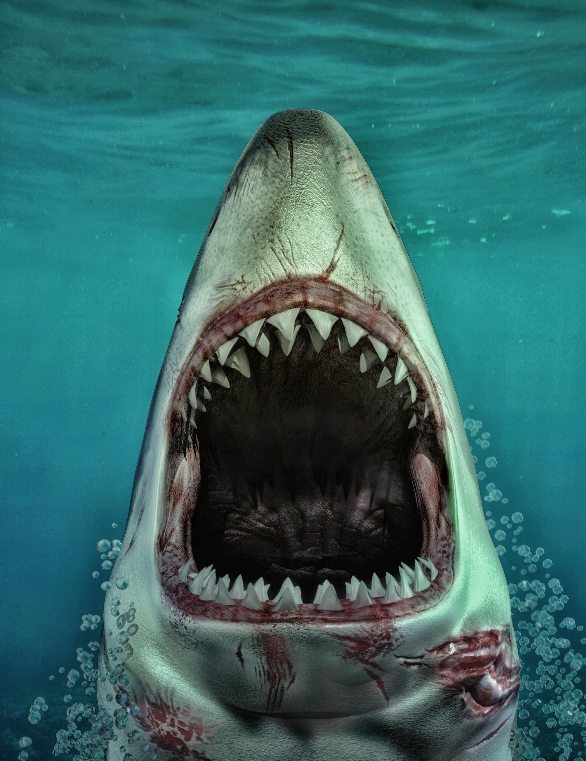Sharks by AM: Great White by: Alessandro_AM, 3D Models by Daz 3D