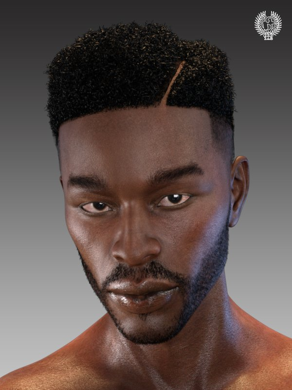 Top Fade Hair and Beard for Genesis 8 Male(s) by: SamSil, 3D Models by Daz 3D