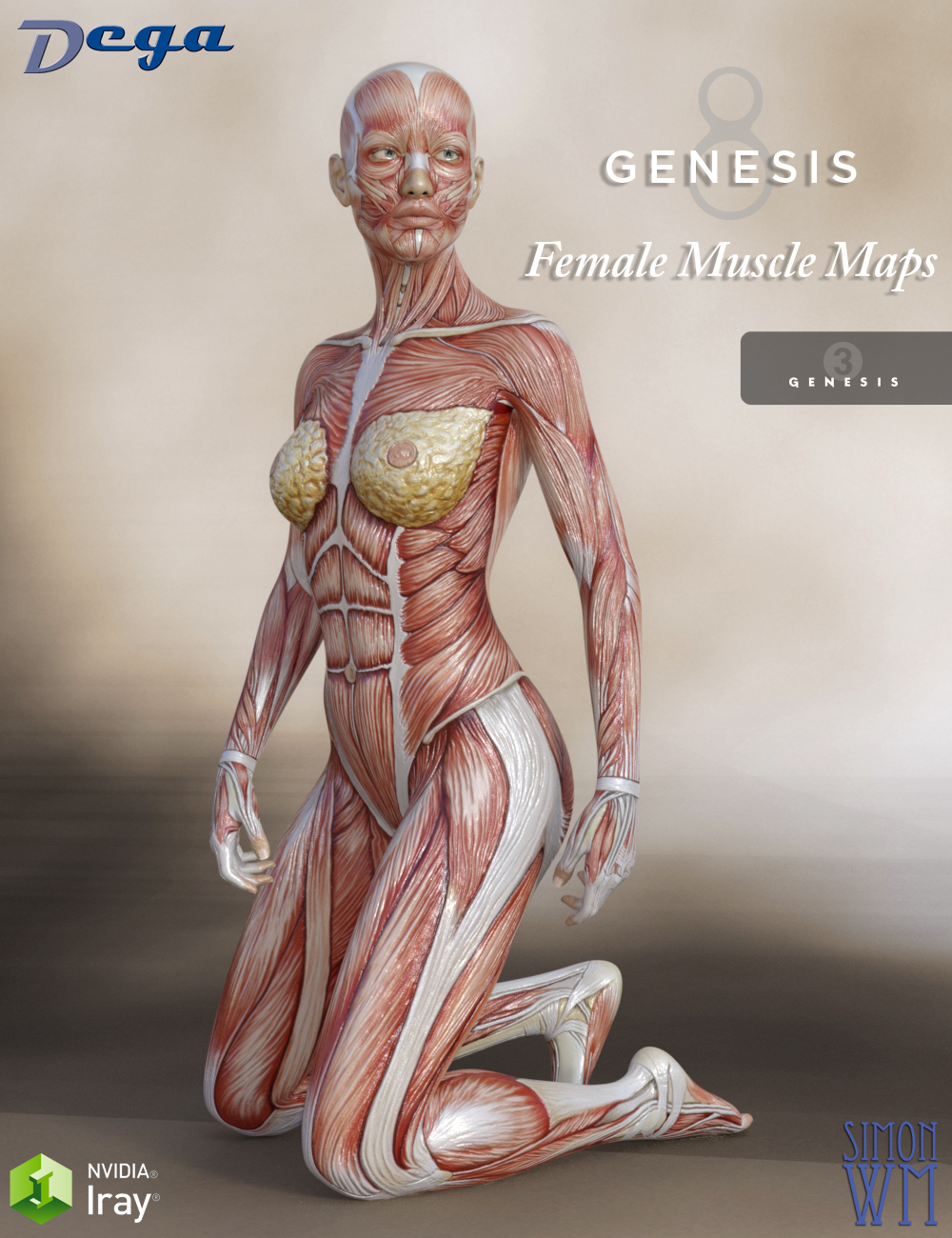 Muscle Maps for Genesis 3 and 8 Female by: DegaSimonWM, 3D Models by Daz 3D