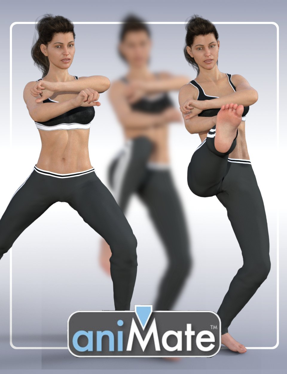 aniMate Martial Arts Combos for Victoria 8 by: GoFigure, 3D Models by Daz 3D