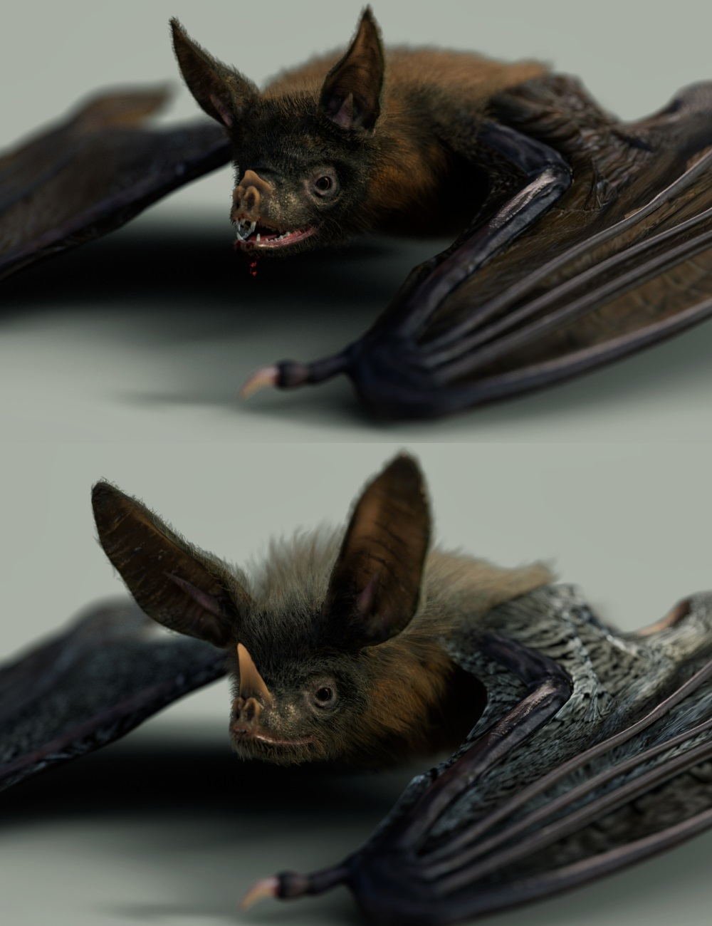 Vampire Bat by AM by: Alessandro_AM, 3D Models by Daz 3D