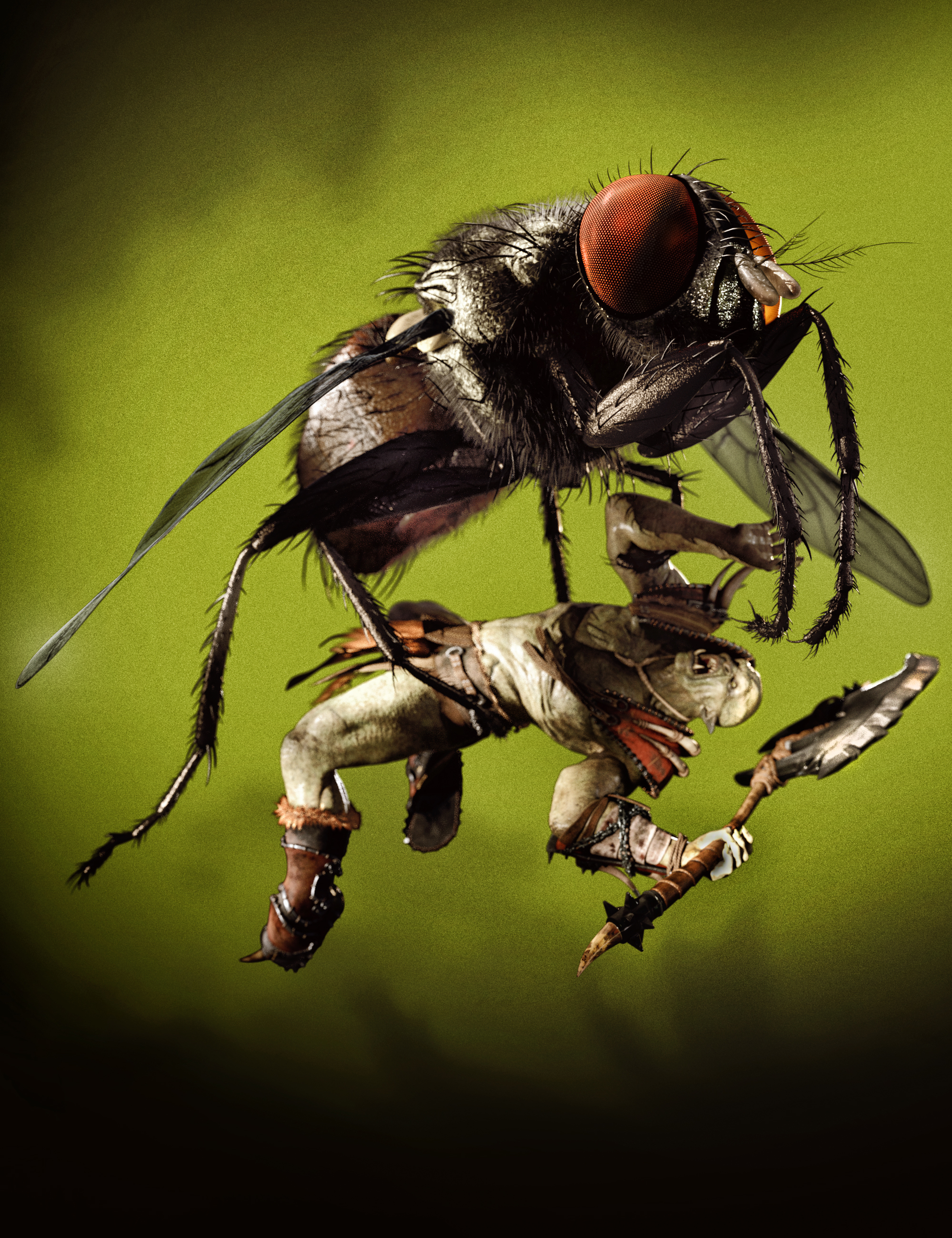 Housefly by AM by: Alessandro_AM, 3D Models by Daz 3D