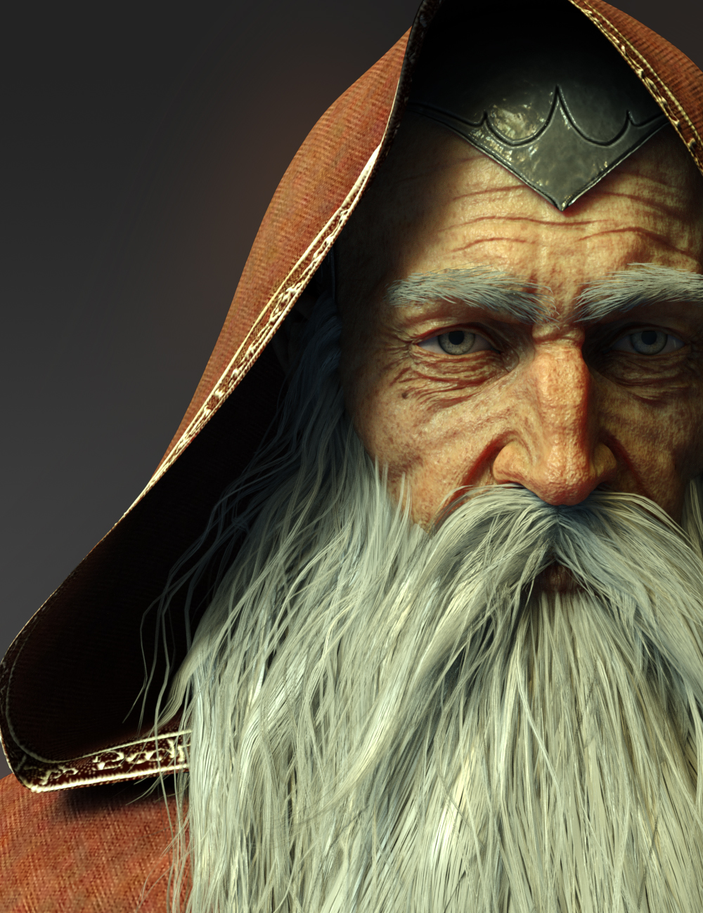 Wise Wizard HD Character for Genesis 8 Male by: Luthbel, 3D Models by Daz 3D