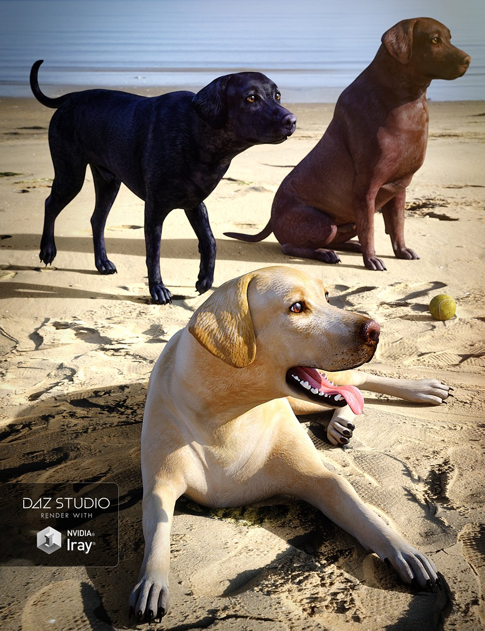Labrador for Daz Dog 8 by: , 3D Models by Daz 3D