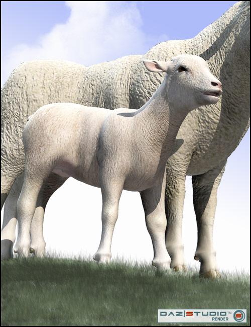 DAZ Lamb by: , 3D Models by Daz 3D