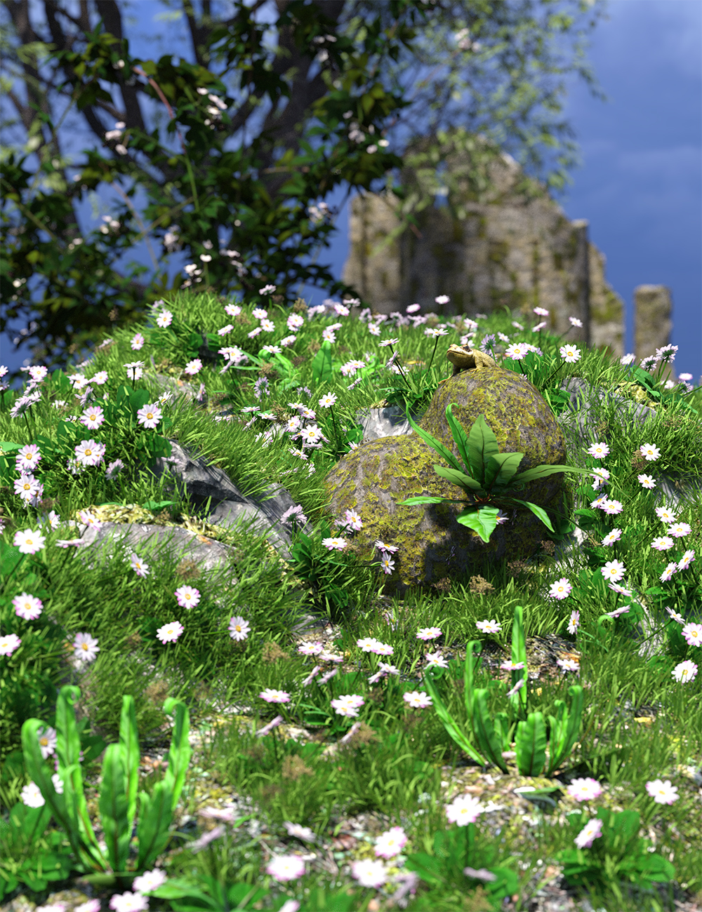 The (Im)Perfect Lawn - Essential Grassland Flowers and Plants by: MartinJFrost, 3D Models by Daz 3D