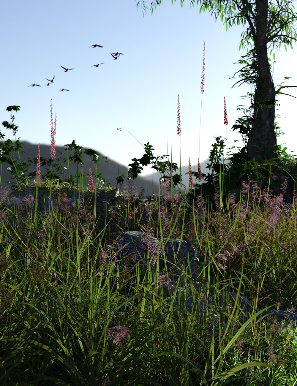 Long Grass - Essential Grassland Flowers and Plants by: MartinJFrost, 3D Models by Daz 3D