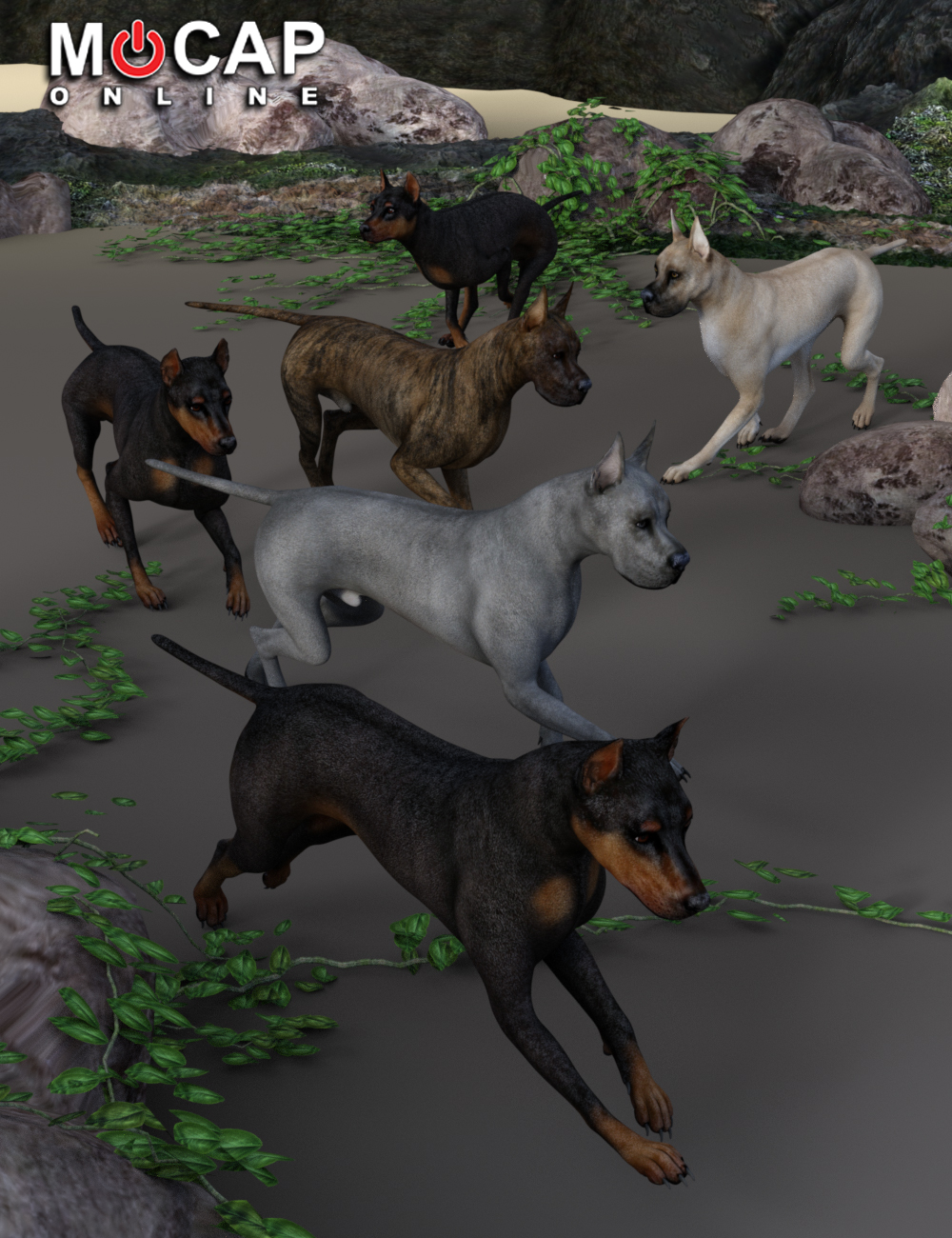 Dog 8 Animation Cycles - Base and Great Dane by: Mocap Online, 3D Models by Daz 3D