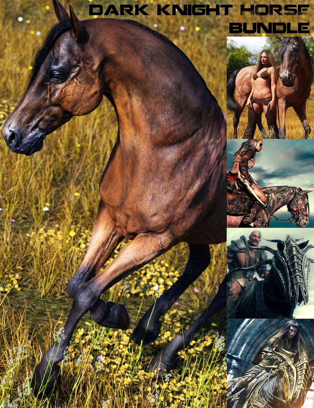 Dark Knight Horse Bundle by: Linday, 3D Models by Daz 3D