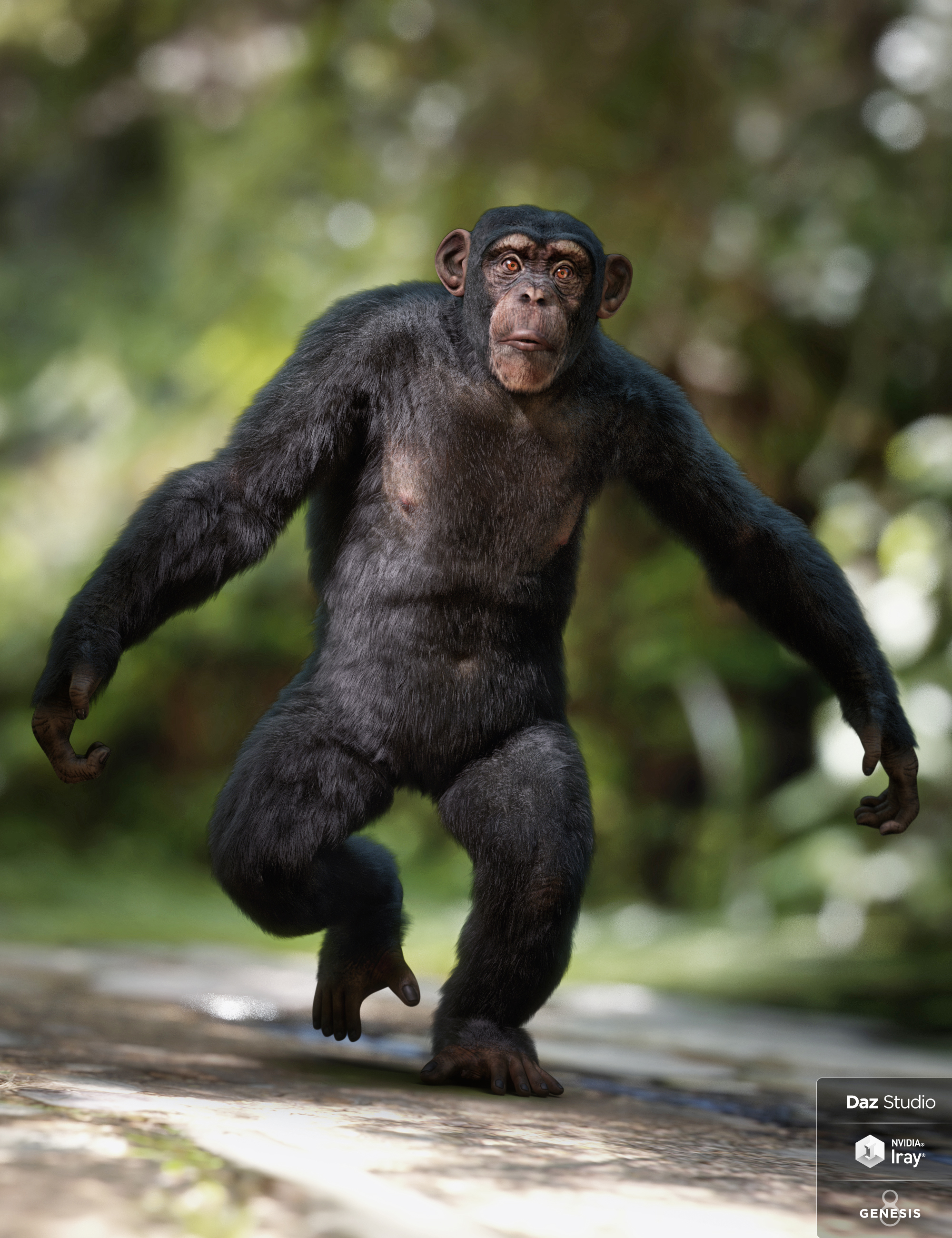 Anthropomorphs - Chimpanzee for Genesis 8 Male by: Alessandro_AM, 3D Models by Daz 3D