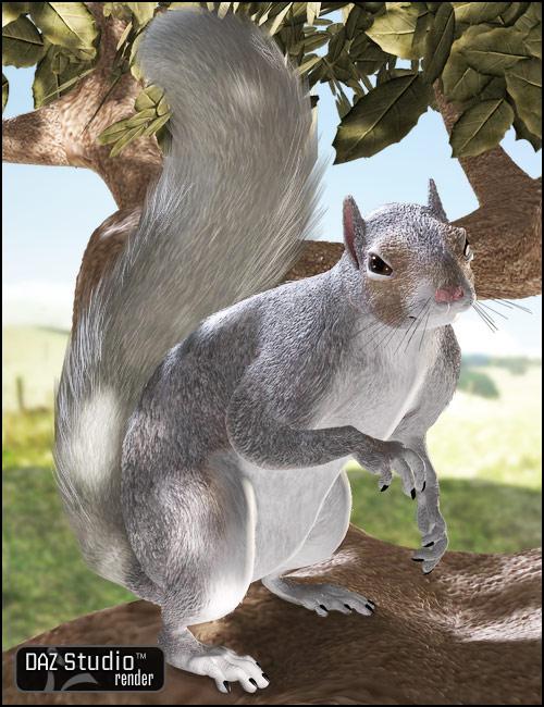 DAZ Squirrel by: , 3D Models by Daz 3D