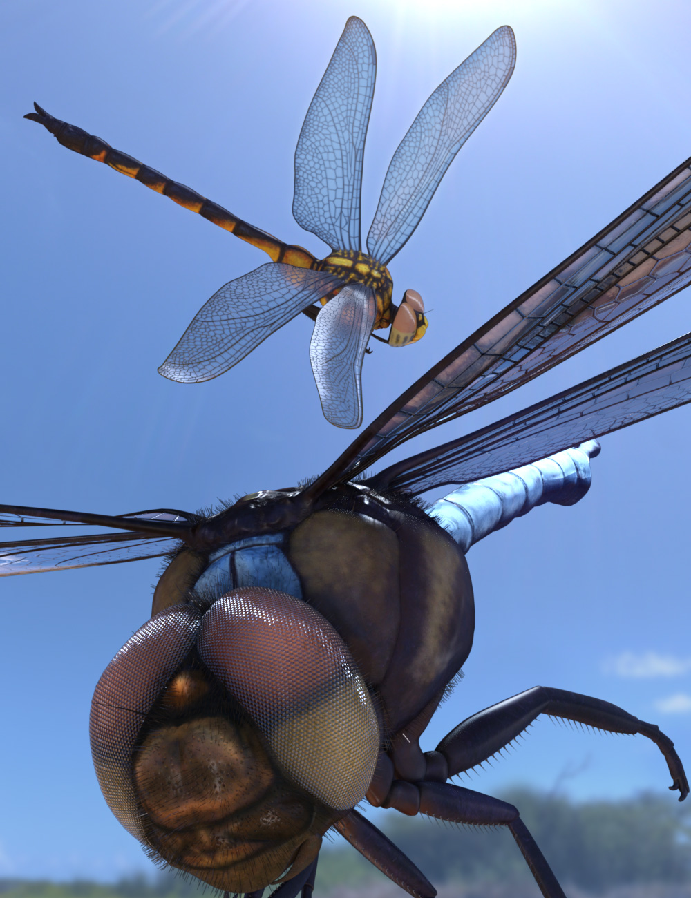 Meshworkz Dragonfly by: WillDupre, 3D Models by Daz 3D