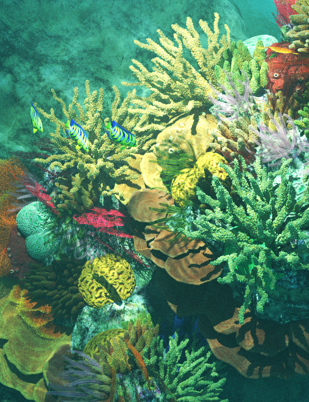v176 Iray Coral Reef by: vikike176, 3D Models by Daz 3D
