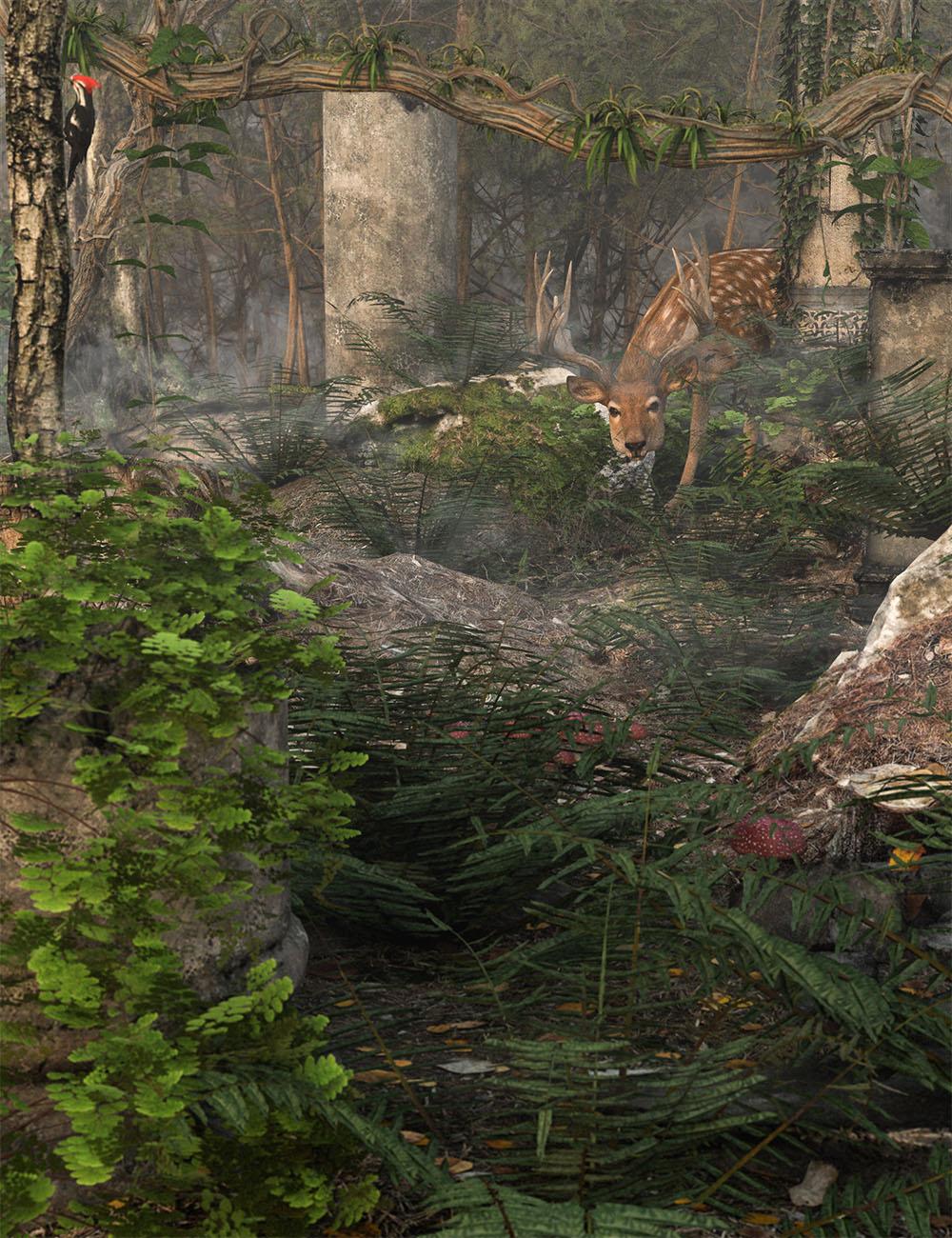 Wild Plants Temperate Ferns Vol 2 by: MartinJFrost, 3D Models by Daz 3D