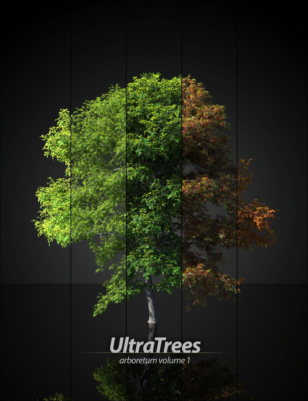 UltraTrees - Arboretum Volume 1 by: HowieFarkes, 3D Models by Daz 3D