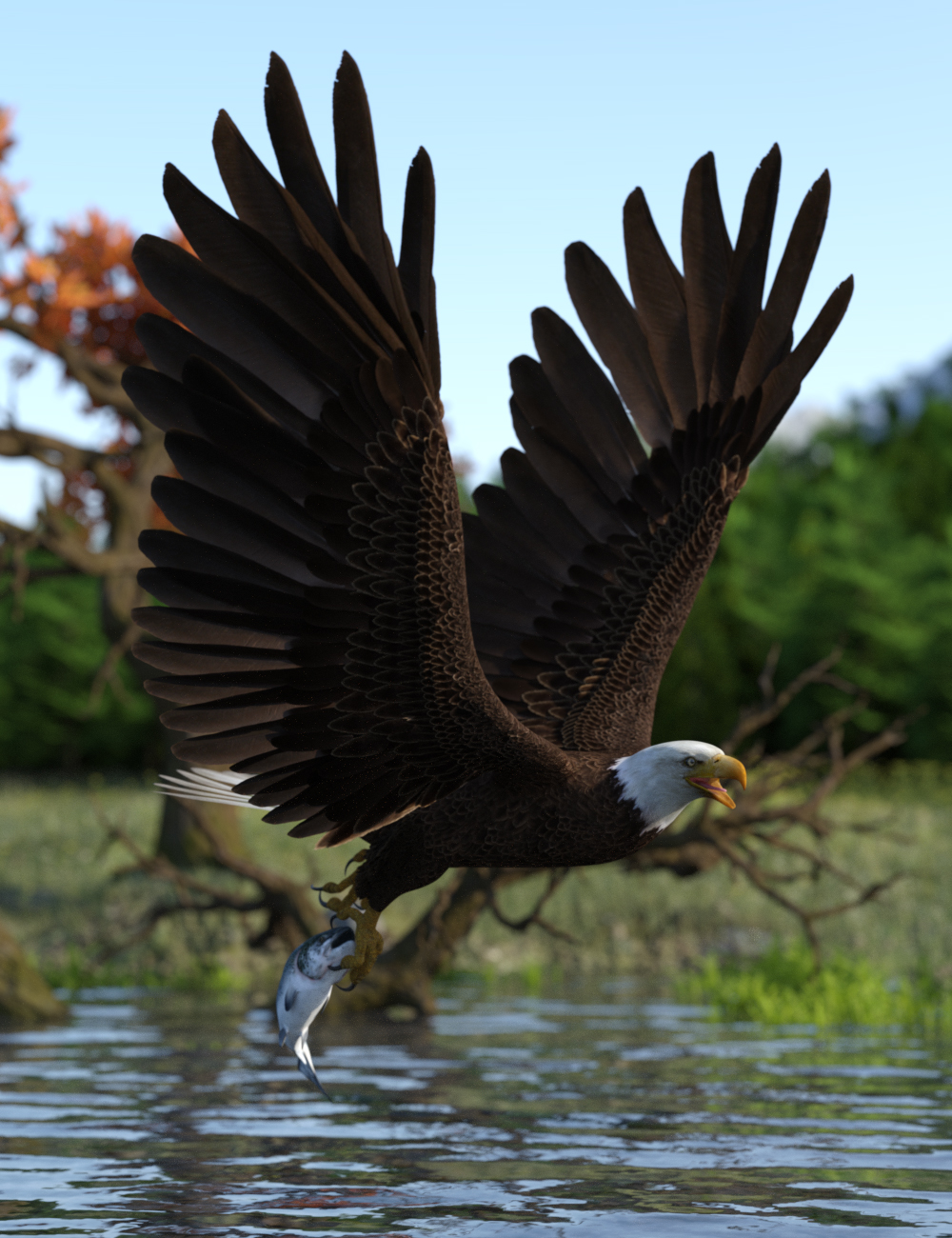 Deepsea's Eagle Poses and Fish by: Deepsea, 3D Models by Daz 3D