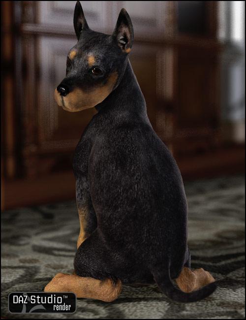 Millennium Puppy LE by: , 3D Models by Daz 3D
