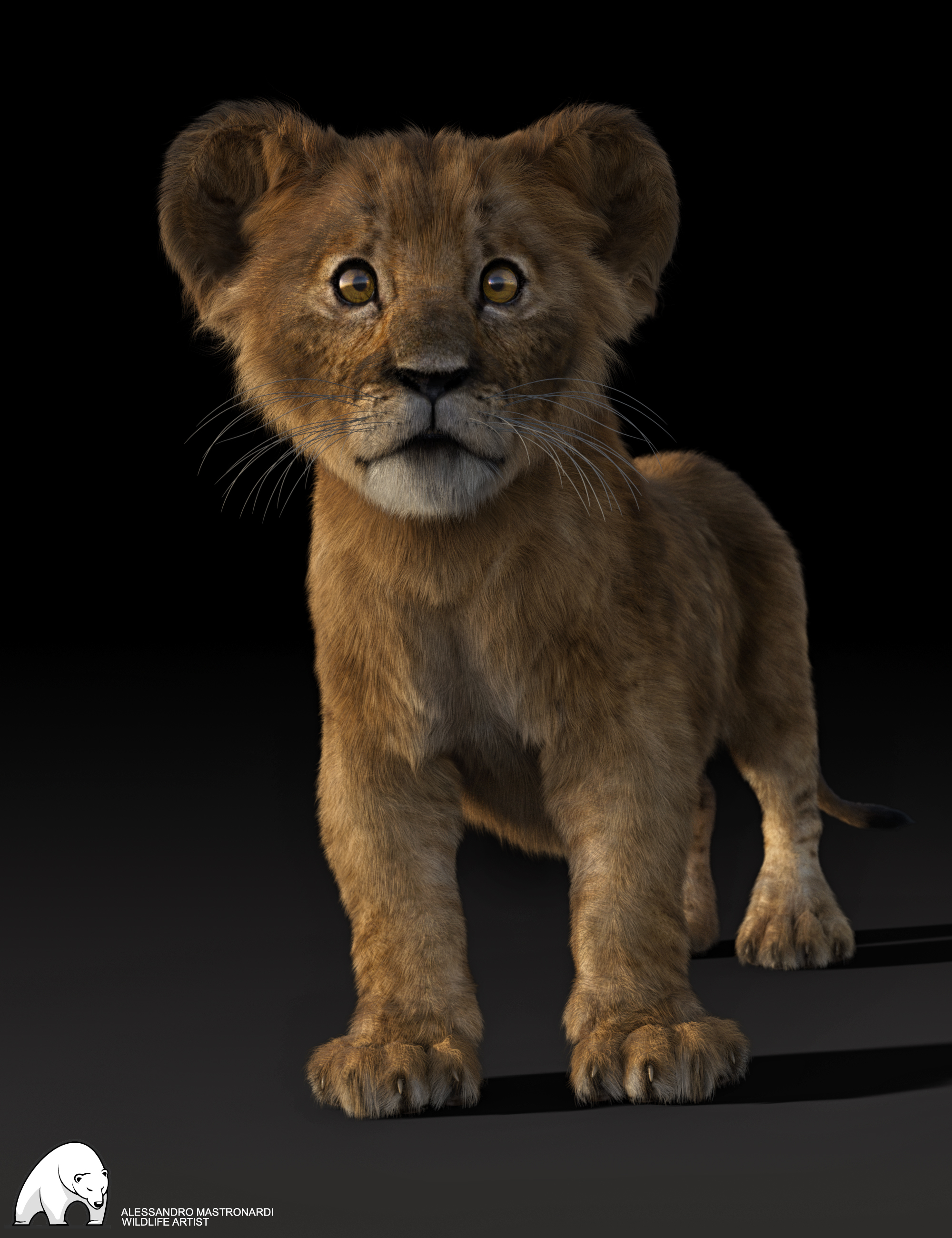 Felidae by AM - Kimbo the Lion Cub by: Alessandro_AM, 3D Models by Daz 3D