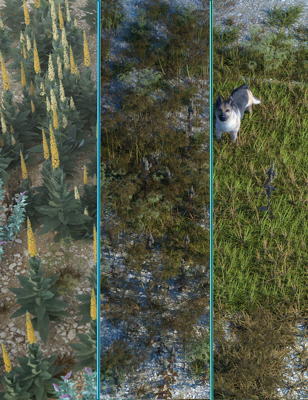 Wasteland Plants and Weeds - Low Resolution Instant Ecosystems by: MartinJFrost, 3D Models by Daz 3D