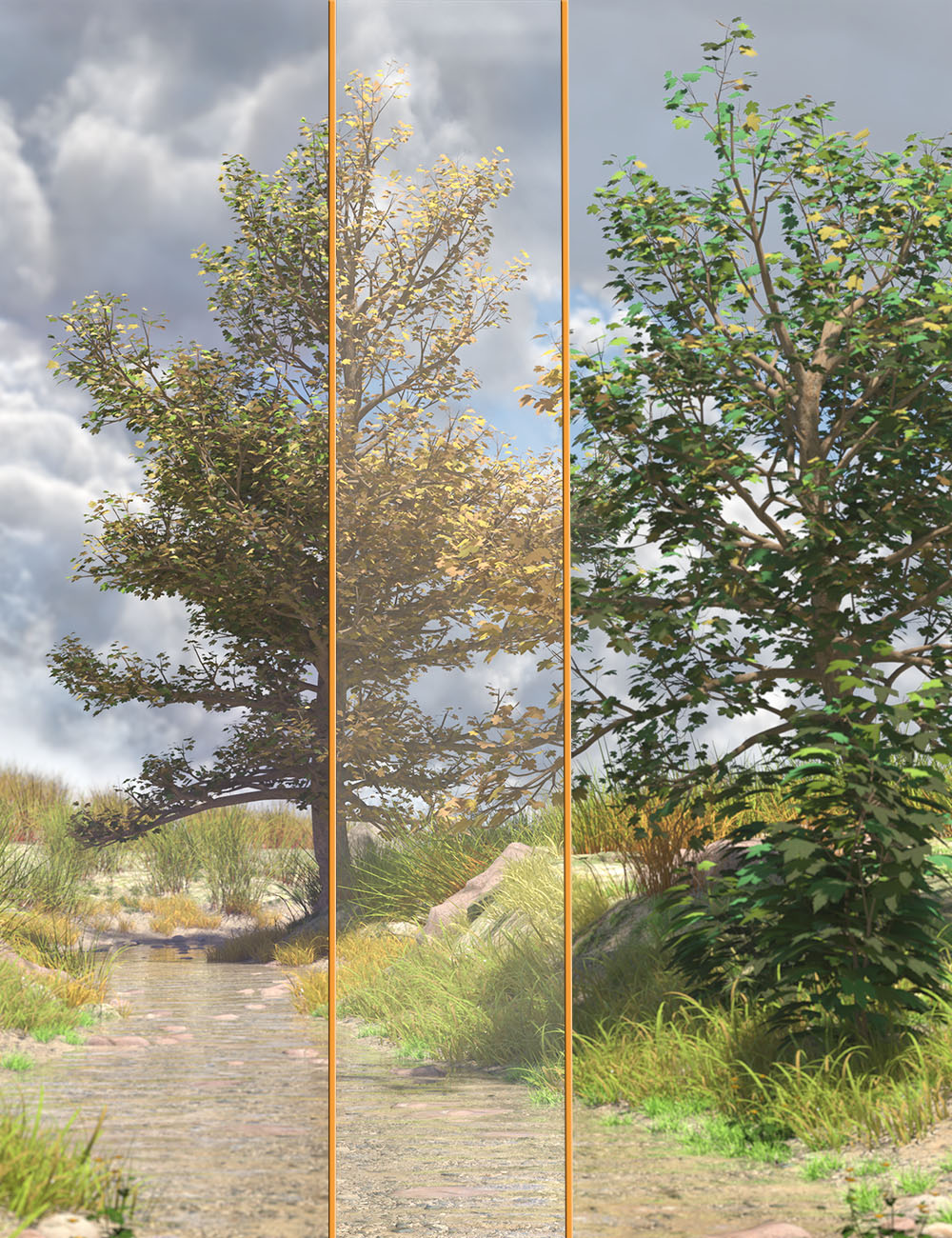 The Greenwood Vol 1 Sycamore Trees by: MartinJFrost, 3D Models by Daz 3D