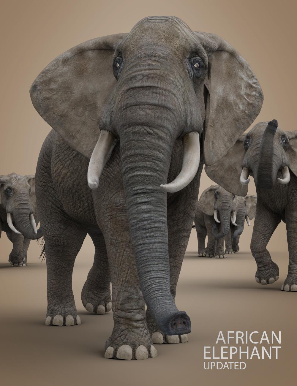 African Elephant Updated by: Deepsea, 3D Models by Daz 3D