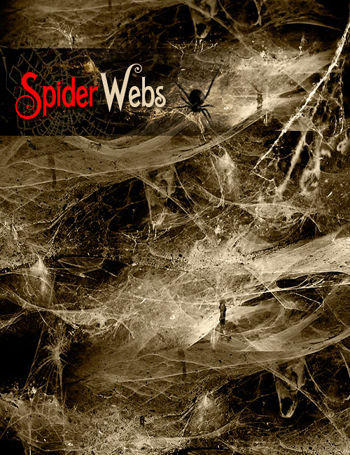 Ron's Spider Webs by: deviney, 3D Models by Daz 3D