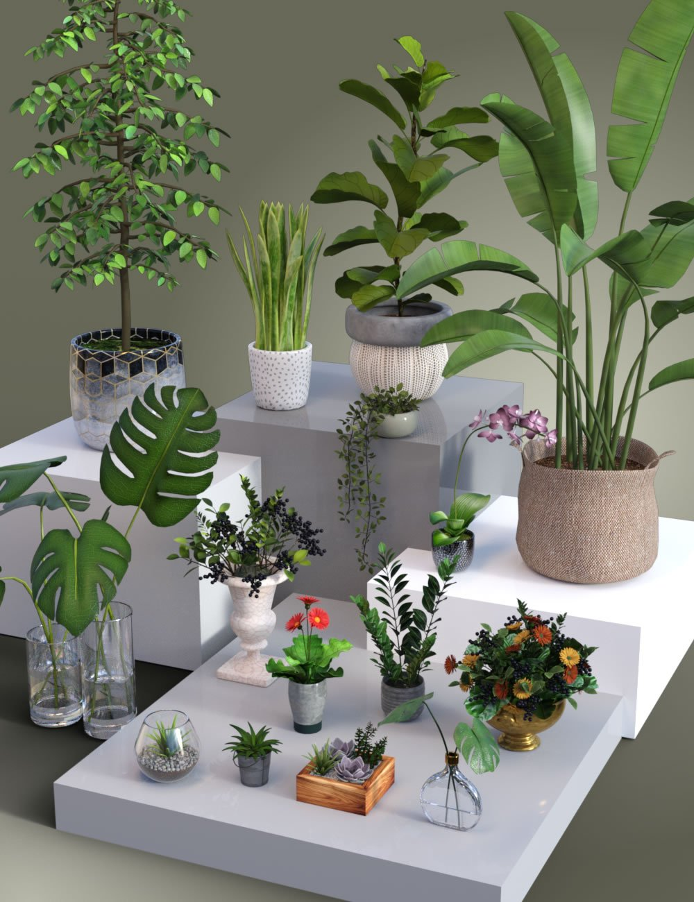 Collection of Pot Plants by: SilvaAnt3d, 3D Models by Daz 3D