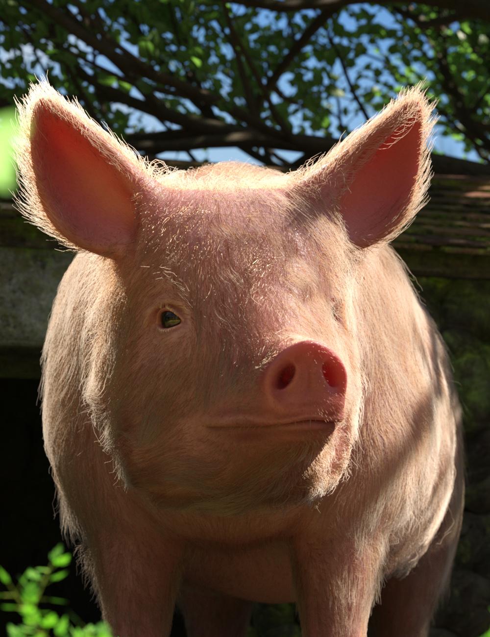 LoREZ Pig 2 by: Predatron, 3D Models by Daz 3D