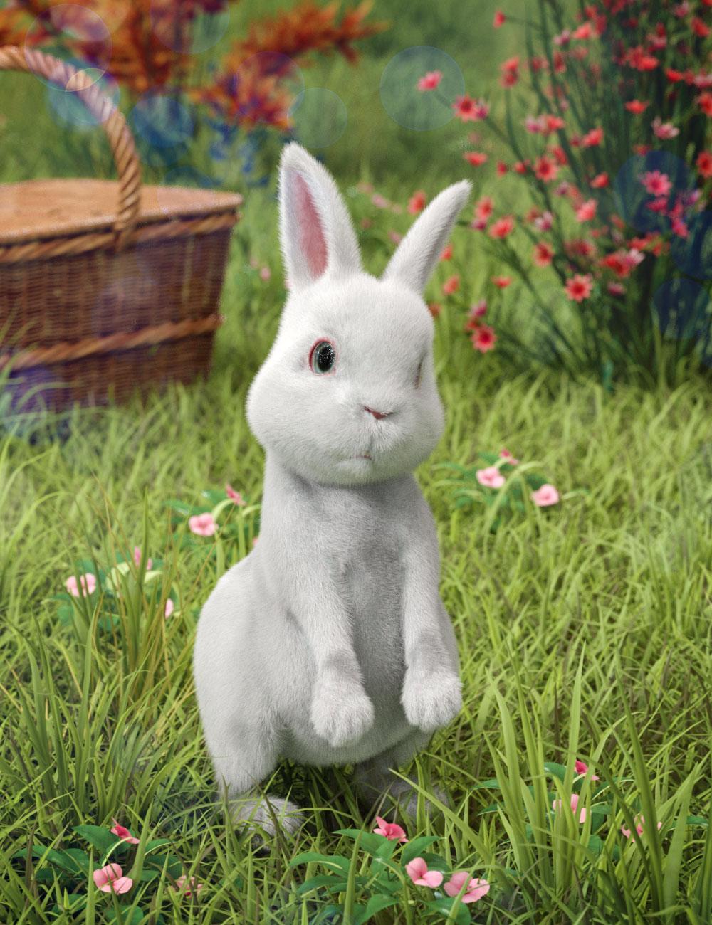 Pufflet The Bunny by: Hypertaf, 3D Models by Daz 3D