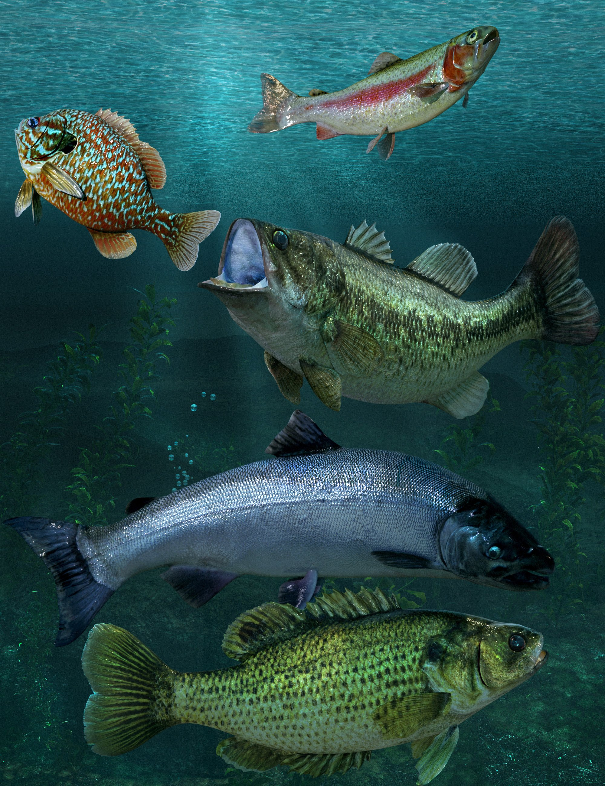 Freshwater Game Fish by: The Alchemist, 3D Models by Daz 3D