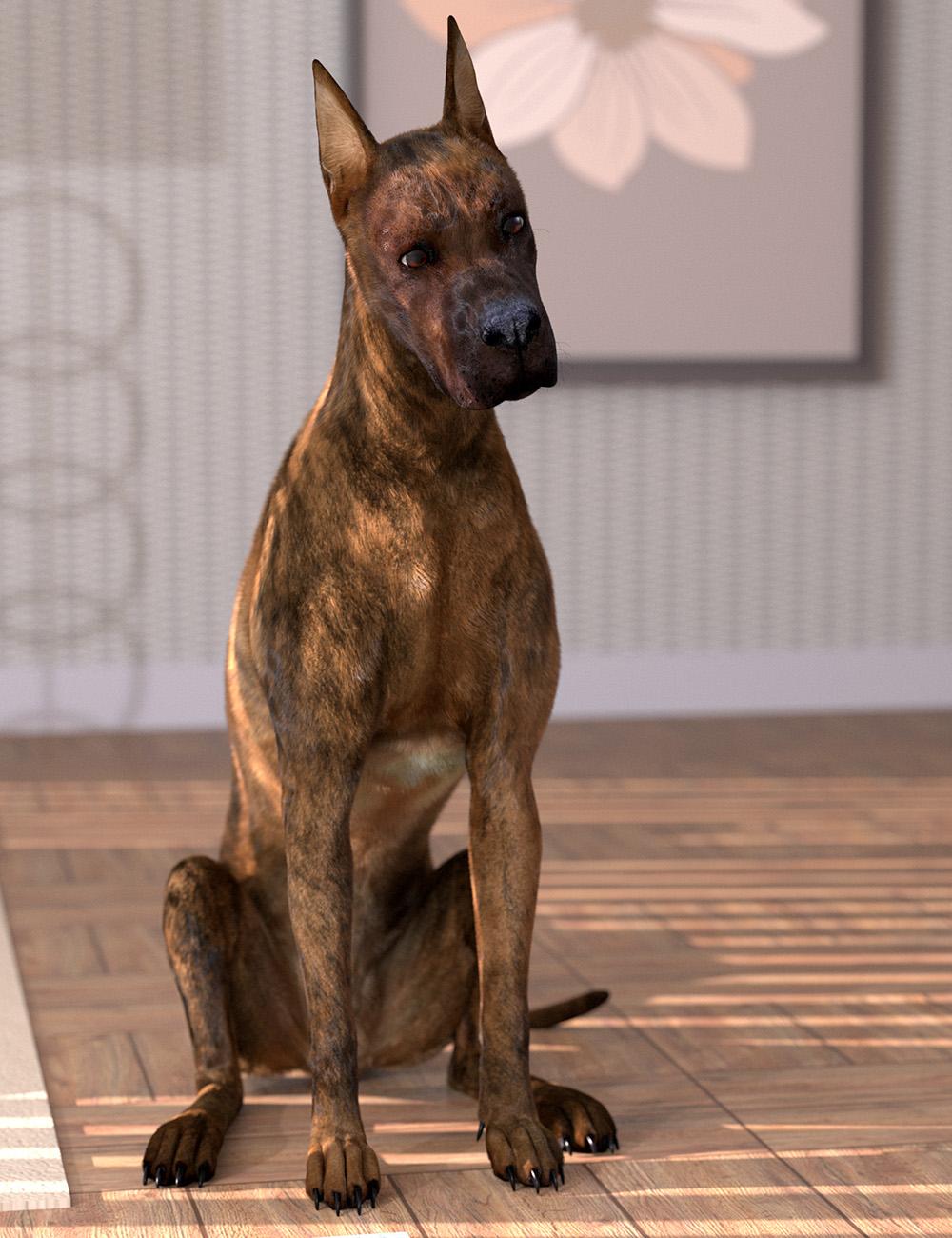 Oso Dog Fur for Daz Dog 8 by: Oso3D, 3D Models by Daz 3D