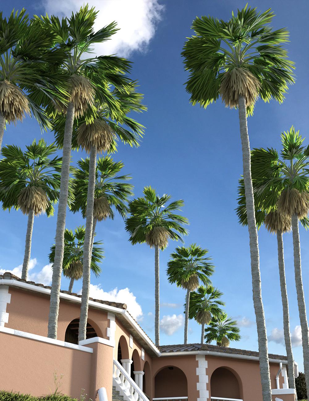 Predatron Washingtonia Fan Palm Trees by: Predatron, 3D Models by Daz 3D