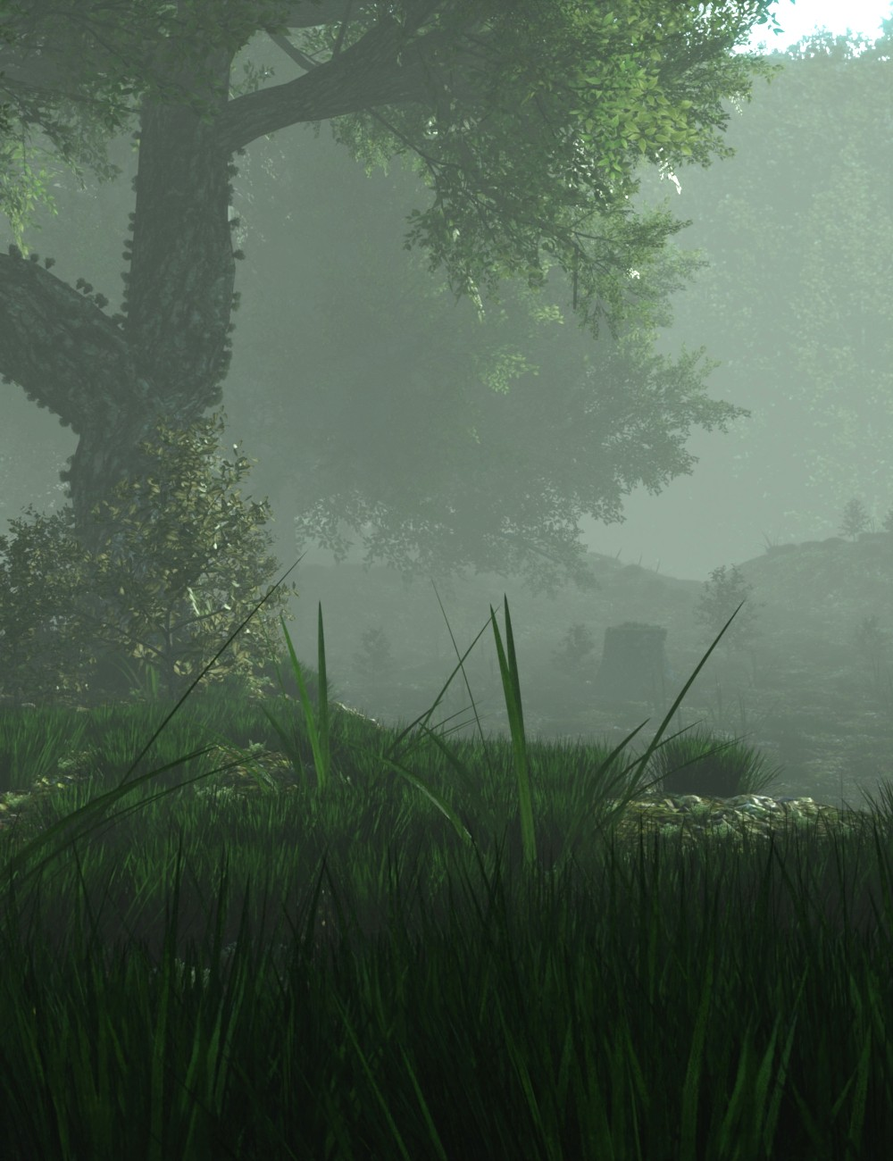 Mysterious Forest by: JeffersonAF, 3D Models by Daz 3D